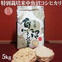 平成30年産☆特別栽培米中魚沼産コシヒカリ5kg(大島さん)