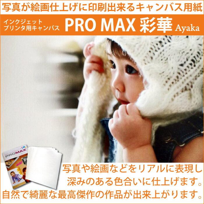 インクジェットキャンバス「ProMax彩華」 A4(210mm×297mm)(1冊10枚入り)3冊セット写真 絵画 絵画調 インクジェットプリンター インクジェットペーパー 写真ペーパー プリンター エプソン キャノンブラザー ローランド 複合機 パソコン周辺機器