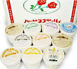 【北海道・十勝のジェラート】ハッピネスデーリィ人気のアイス10個セット地元で大人気の無添加・ジェラート