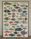 【紅型工房べにきち】ポスター 琉球の魚