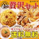 餃子炒飯★贅沢セット大阪王将 送料無料 焼き飯炒飯冷凍食品