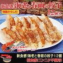 【餃子】【大阪王将】新食感!海老と春雨の餃子 12個入(特製からし付き) 【ギョーザ】