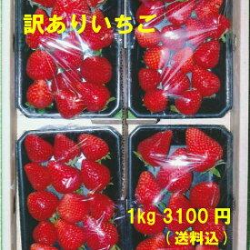 訳ありいちご 減農薬・無化学肥料 ご家庭用におすすめ 愛知県産 ゆめのか フルーツ 1kg(250g×4パック)【送料込】