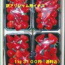 訳アリジャム用イチゴ 低農薬・無化学肥料 生食可能 愛知県産 ゆめのか フルーツ 1kg(250g×4パック)【送料込】