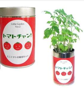 【栽培セット】 リトルガーデン トマトチャン