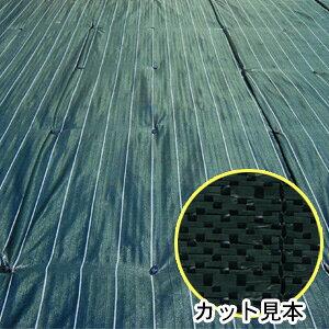 防草・防塵用 ライン入りグランドバリアクロス3 GBC-3 2m×50m巻 萩原工業 ODグリーン/ブラック【法人のみ】【営業所留め可】