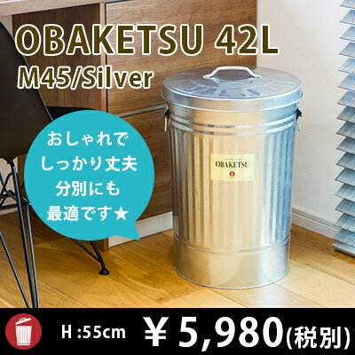【OBAKETSU】オバケツ M45 (42Lサイズ・シルバー)