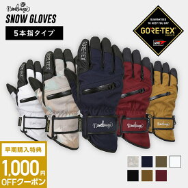 全品割引券配布中 スノーボードグローブ スキーグローブ GORE-TEX ゴアテックス スノーボード スキー グローブ レディース メンズ スノボ スノボー スキー スノボグローブ スノボーグローブ スノーグローブ 手袋 てぶくろ 5本指 激安 AGE-51 namelessage
