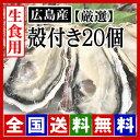【期間限定】生牡蠣 生食用 殻付き牡蠣20個 広島牡蠣(サイズ選別 厳選品)[産地直送] 鮮度と美味しさが違います! […