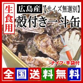 生牡蠣 生食用 殻付き牡蠣 一斗缶(約100個)[サイズ無選別] 牡蠣の大きさは大小様々です。【ナイフ・手袋付】/牡蠣 殻付き/牡蠣 生食 ※商品のお届けは2月28日(金)までとなっております。