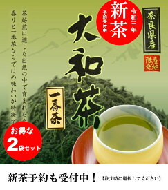 【お得な2袋セット】大和茶 新茶 予約受付中 日本茶 奈良 奈良県 山城物産 日本茶 お茶