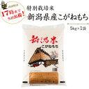 新米 令和2年産 特別栽培米〔もち米〕新潟産こがねもち5kg【送料無料】(一部地域を除く)