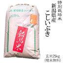 令和元年産特別栽培米新潟産こしいぶき玄米25kg/白米4.5kg×5袋(精米無料)送料無料※一部地域を除く【あす楽対応_本州…