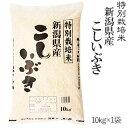 令和元年産特別栽培米新潟県産こしいぶき10kg×1袋【送料無料】(一部地域を除く)【あす楽対応_本州】【あす楽対応_関…