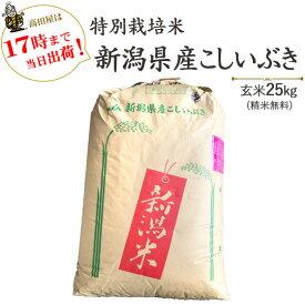 令和2年産特別栽培米新潟産こしいぶき玄米25kg/白米4.5kg×5袋(精米無料)送料無料※一部地域を除く【あす楽対応_本州】【あす楽対応_関東】【あす楽対応_四国】