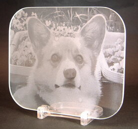 ガラスのマウスパット 写真彫刻(表面フロスト加工なし)
