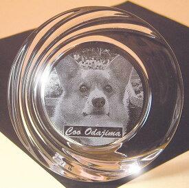 ペットの写真彫刻イタリア製クリスタルフォトフレーム丸型.ペット.お皿.自分用,ギフト,クリスマス【RCP】
