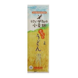 もちっとうどん 200g×12袋 にいがたの小麦畑 丸榮製粉 乾麺 本州送料無料