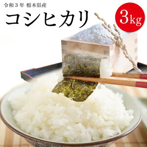 栃木県産 コシヒカリ 3kg 令和2年 送料無料 令和二年産 栃木 こめ コメ 米 3キロ 精米 白米 銘柄米 ブランド米 単一原料米