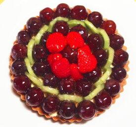 誕生日ケーキ バースデーケーキ フルーツケーキ 記念日ケーキ ぶどうのタルト16cm(5号)誕生日ケーキに!