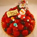 粒選りベリーのプレミアムタルト19cm ☆クリスマスケーキ☆
