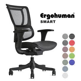 Ergohuman smart(エルゴヒューマン スマート)/ アームレスト付【エルゴヒューマンチェアー】【お客様組み立て】【沖縄県・離島以外送料無料】
