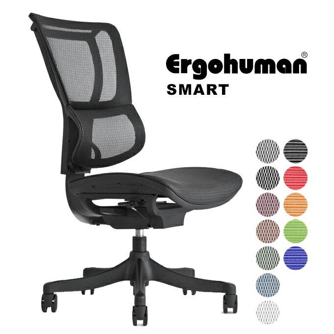 Ergohuman smart(エルゴヒューマン スマート)/ アームレスト無し【エルゴヒューマンチェアー】【お客様組み立て】