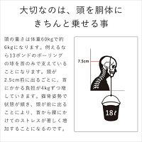 卓上傾斜台angle10(アングルテン)[BORDERLESS]専用マット付属【宅配便送料無料】カラー:シルバーorブラック(2タイプからご選択下さい)