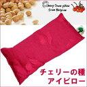 【チェリーストーンピロー スモール(チェリーピロー)】 さくらんぼの種の枕 アイピロー 夏は冷やして、冬は温めて、…