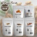 昆虫食 食用 閲覧注意 良質な脂質が含まれた高栄養食 高蛋白で低糖質 豊富なアミノ酸 ミネラル THAILAND UNIQUE 昆虫…