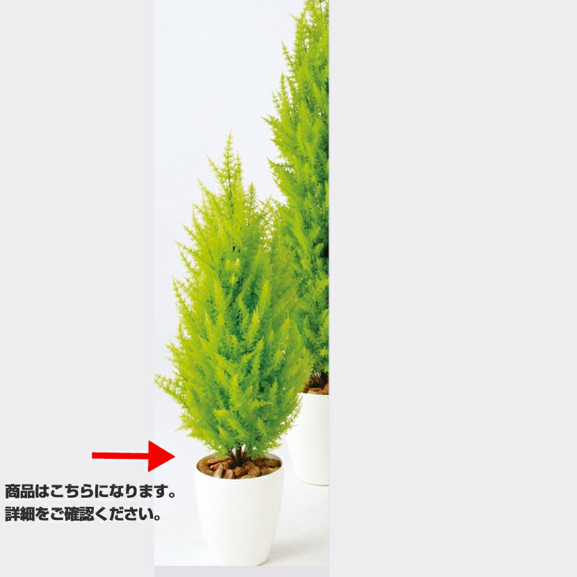 観葉植物 人工 樹木 ゴールドクレストツリー 高さ1100mm Sサイズ 鉢:RP-225