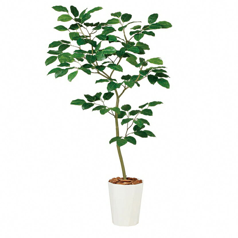 観葉植物 人工 樹木 ベンガルボダイジュ FST 高さ1500mm Mサイズ 鉢:クォーツ240