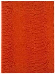 【2248円×1セット】レイメイ藤井 ノートパッド ツァイトベクター A5 オレンジ ZVP203D