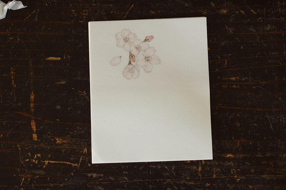 倉敷意匠 赤飯堂 懐紙 24枚入(さくら) 29922-01