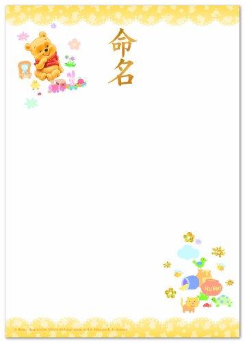 マルアイ IJ命名用紙A4ベビープー GP−Dメ13C (5セット)