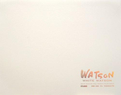 ミューズ ホワイトワトソンブロック F6 シロ HW-306