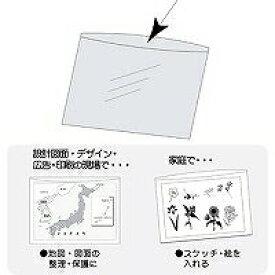【1607円×1セット】コレクト 透明ポケット A1+10ミリ CF-110R