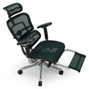 Ergohuman エルゴヒューマンチェア プロ オットマン内蔵 イス 椅子 エラストメリックメッシュ ハイタイプ グリーン