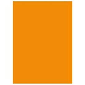 北越コーポレーション オフィス用紙カラーR100 A5オレン500枚*10(10セット)