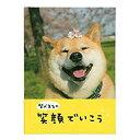 学研ステイフル 柴犬まる 励まし・応援 メッセージブック 柴犬まるの笑顔でいこう E10058 (3セット)