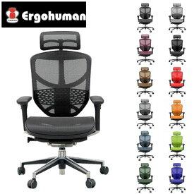 エルゴヒューマン エンジョイ ハイ EJ-HAM [オフィスチェア 高機能チェア メッシュチェア メッシュバック チェア 椅子 いす OAチェア デスクチェア ]