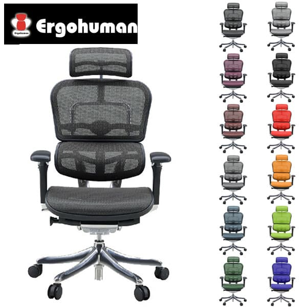 エルゴヒューマン プロ ハイ EHP-HAM [オフィスチェア 高機能チェア メッシュチェア メッシュバック]欠品 グリーン・3Dブルー 11月上旬頃入荷予定