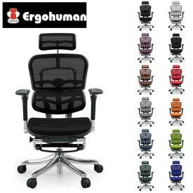 エルゴヒューマン プロ オットマン EHP-LPL [オフィスチェア 高機能チェア メッシュチェア メッシュバック チェア 椅子 いす OAチェア デスクチェア]