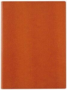 【ラッピング無料】 レイメイ藤井(Raymay) zeitVektor<ツァイトベクター> クロスペーパー ノートパッド B5サイズ ZVP233D オレンジ