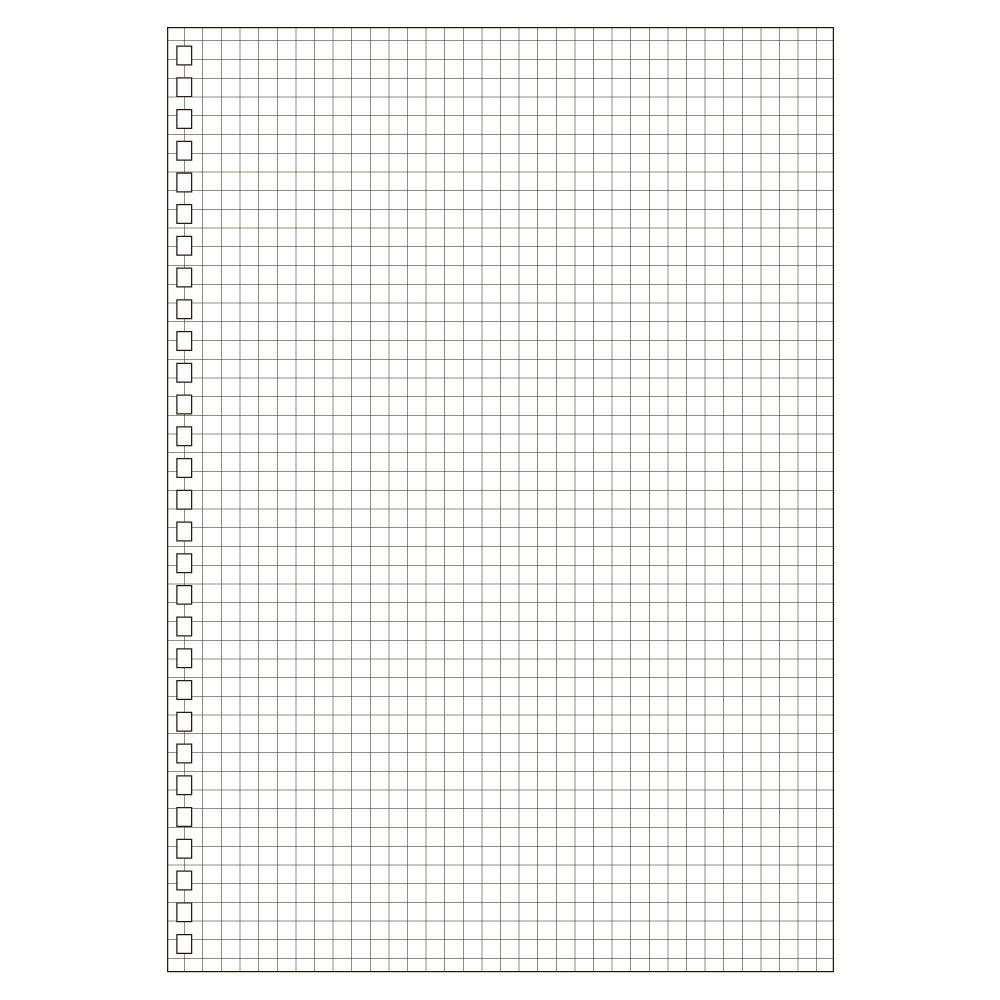【メール便なら送料120円(税込)】LIHIT LAB.<リヒトラブ> ツイストリング・ノート(専用リーフ・B5方眼) N1600S(N-1600S) 【RCP】
