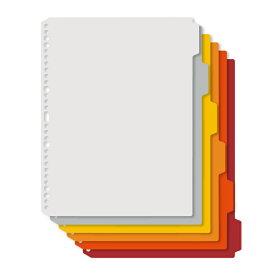 プラス(PLUS)インデックスシート Deja vu Colors (デジャヴ カラーズ) A4-S 4穴30穴 6山1組 ウォームトーンライン FL-102IX 89-427