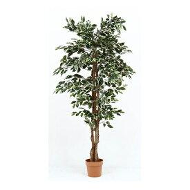 イミテーショングリーン 観葉植物 フィカス 幅900 奥行900 高さ1700mm グリーン 不二貿易 観葉植物 植物 観葉 人工 インテリア 鉢 おしゃれ FB-52664