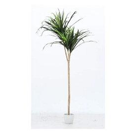 イミテーショングリーン 観葉植物 ドラセナ コンシンネ 幅800 奥行800 高さ1480mm グリーン 不二貿易 観葉植物 植物 観葉 人工 インテリア 鉢 おしゃれ FB-52692