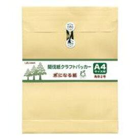 間伐紙クラフトパッカー 木になる紙 角2 封筒 マチ付(+35mm) 10枚入 ホ458【菅公工業】