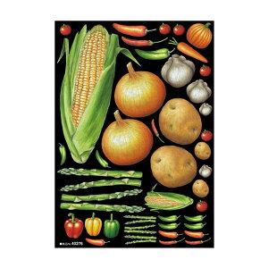 (同梱不可)デコシールA4サイズ 野菜アソート2 チョーク 40276